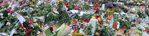 Flowers in Oslo. Photo: Colourbox